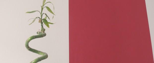bambo-deco-zen-rouge