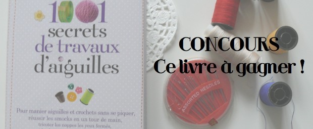 1001-secrets-de-travaux-daiguilles-concours-livre-diy-blog