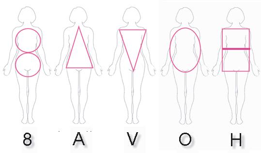 morphologie-conseils
